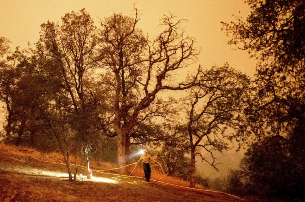 A firefighter lays hose around the Foothills Visitor Center