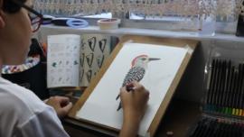 Teenager Illustrates, Photographs Bird Guide