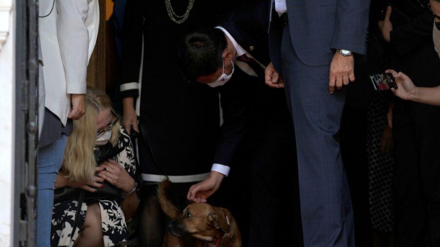Top Dog: Greek Leader's Pet Interrupts News Conference