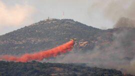 Syria Executes Dozens Over Deadly Human-Sparked Wildfires