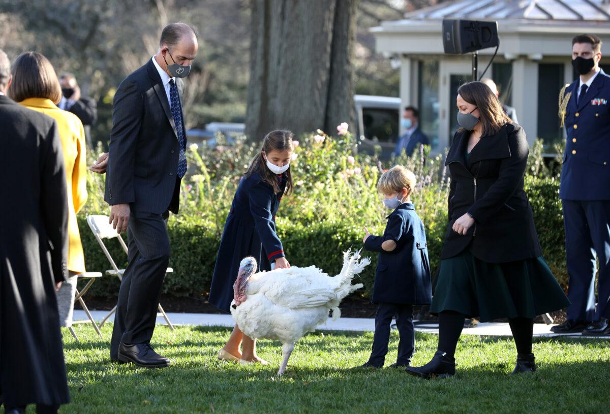 Ivanka Trump's children play with a turkey