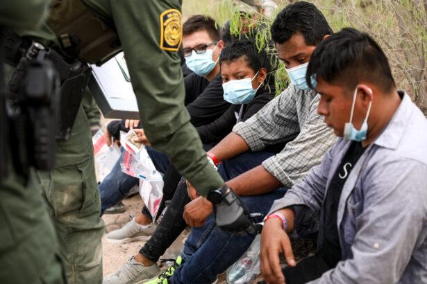 checks an illegal immigrant